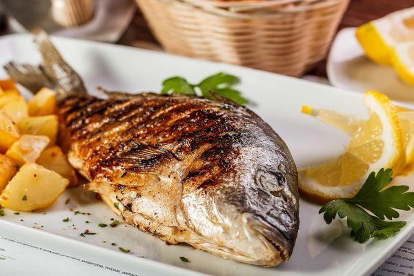 Dorada fish fresh grilled