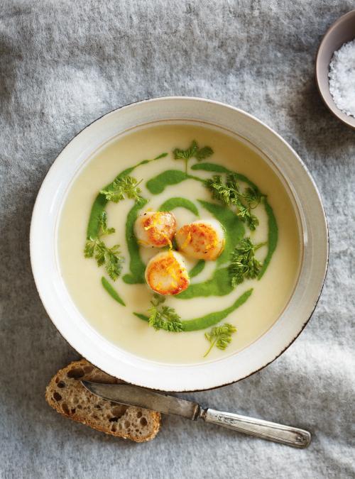 supa cu Carne de scoici Saint Jacques
